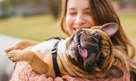 In 2018, spending on pets was a record-breaking $72 billion. And it's not going to stop there. Here's one word why: millennials.