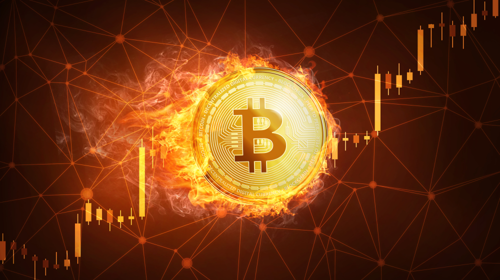 What's Really Behind Bitcoin's 110% Rally