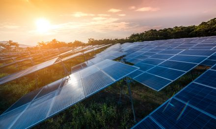 This solar farm revolution is real. It's happening, and I can attest to it because it's right in my own backyard.
