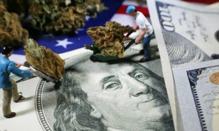 Pot Stock Are Falling