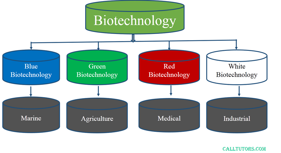Industries with Biotech Stock