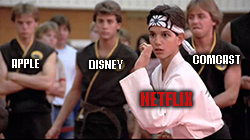 Nothing's ever going to keep Netflix Inc. (Nasdaq: NFLX) down … not even a leg sweep from Disney+.