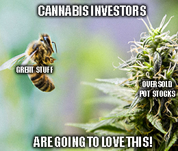 Don't Waver on Aurora — Pot Stocks Are Ready for a Comeback
