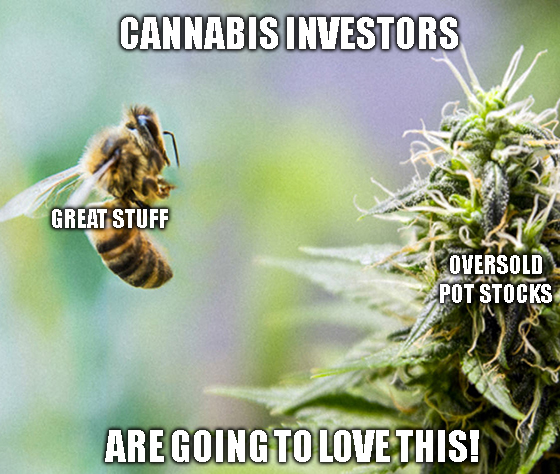 Cannabis stocks, like Aurora Cannabis (ACB), havee been unjustly hammered over this vaping disease. That means profits for those who invest wisely now.