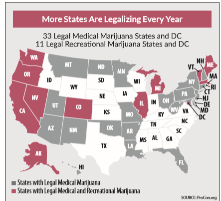 Even though the pot sector is showing big losses, the underlying push toward decriminalization still persists.
