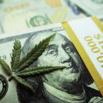 pot stock, cannabis leaf and dollar