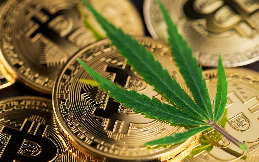 Pot Stocks and Bitcoin: 2 Buys for 2020