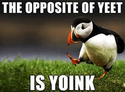 Yext Inc. (NYSE: YEXT) is getting yeeted today.