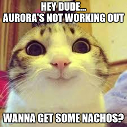 Canadian weed producer Aurora Cannabis Inc. (NYSE: ACB) is stoned, and now everyone knows it.