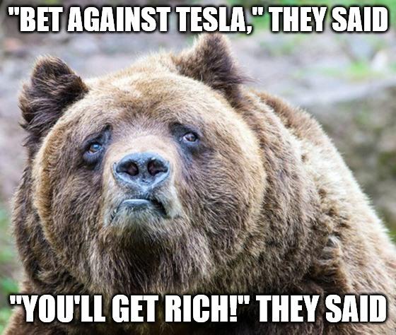 Bet Against Tesla Meme