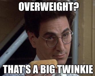 Hostess Big Twinkie Meme