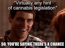 Hint of cannabis legislation hopeful legalization meme