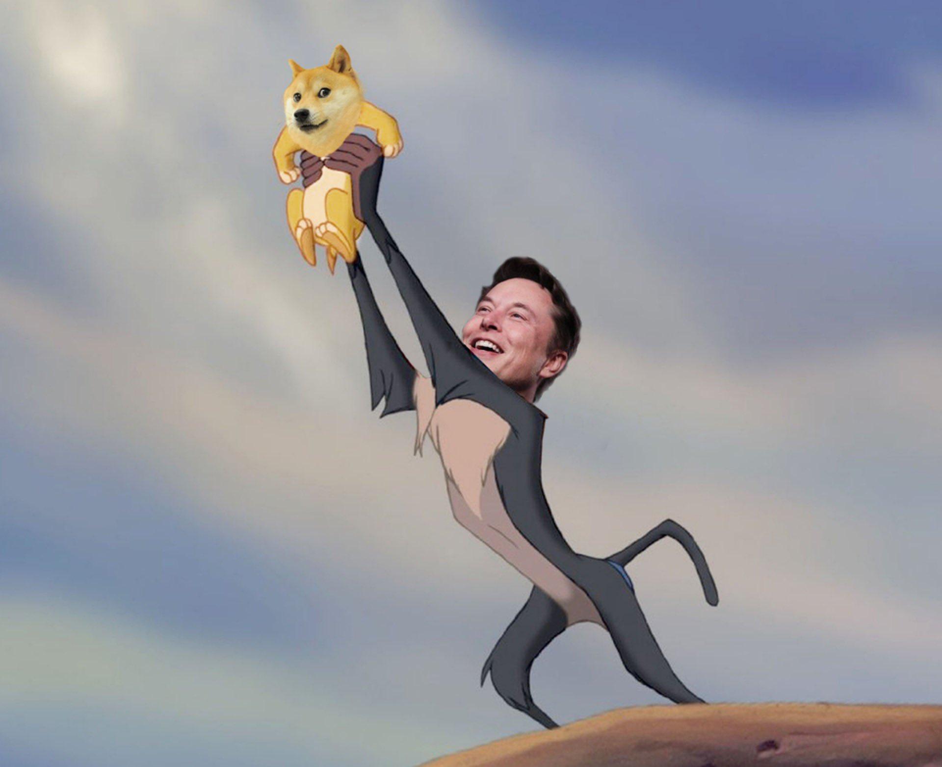 Elon Musk Dogecoin Lion King meme