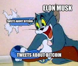 Musk Tweets about bitcoin backfiring meme