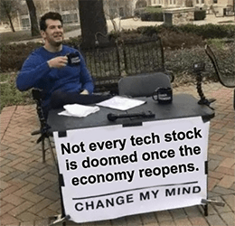 Not every tech stock is doomed post-pandemic meme