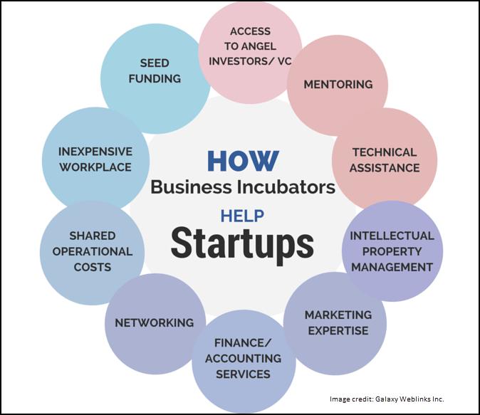 business incubators startup diagram