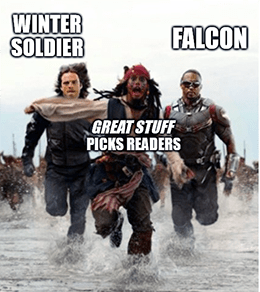Falcon Winter Soldier Picks readers DIS meme
