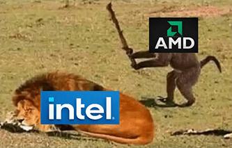 AMD monkey vs Intel lion wakes up meme