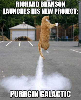 Purrgin Galactic meme