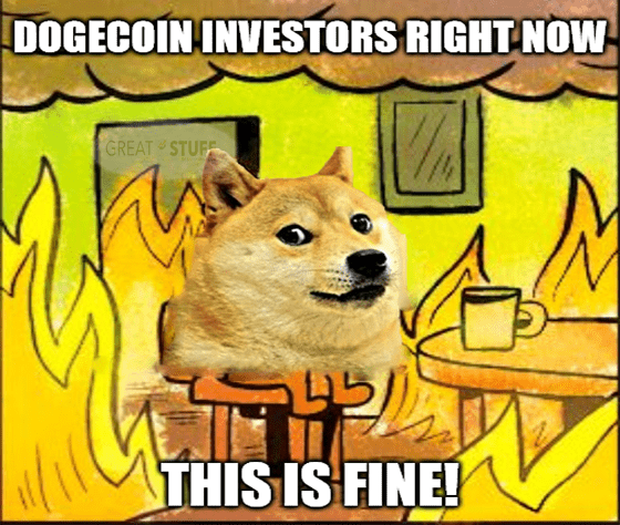 Dogecoin investors this is fine meme big