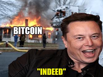 Bitcion Musk house on fire meme