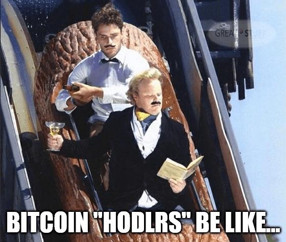 Bitcoin hodlers be like meme big