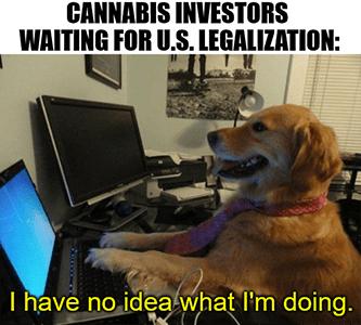 Cannabis investors waiting for U.S. legalization have no idea dog meme