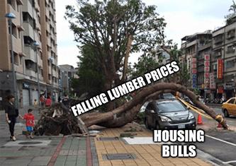 Falling lumber prices tree housing bulls car meme