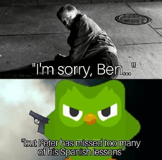 I'm sorry Ben Peter missed Spanish lessons DUOL meme
