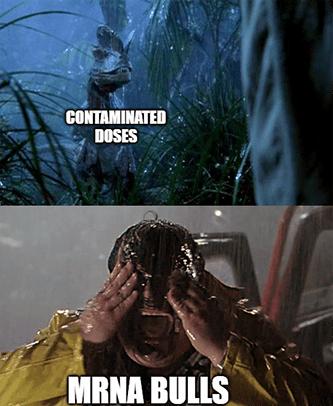 Contaminated doses vs. Moderna investors Jurassic park meme