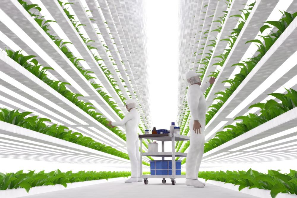 Food Revolution.