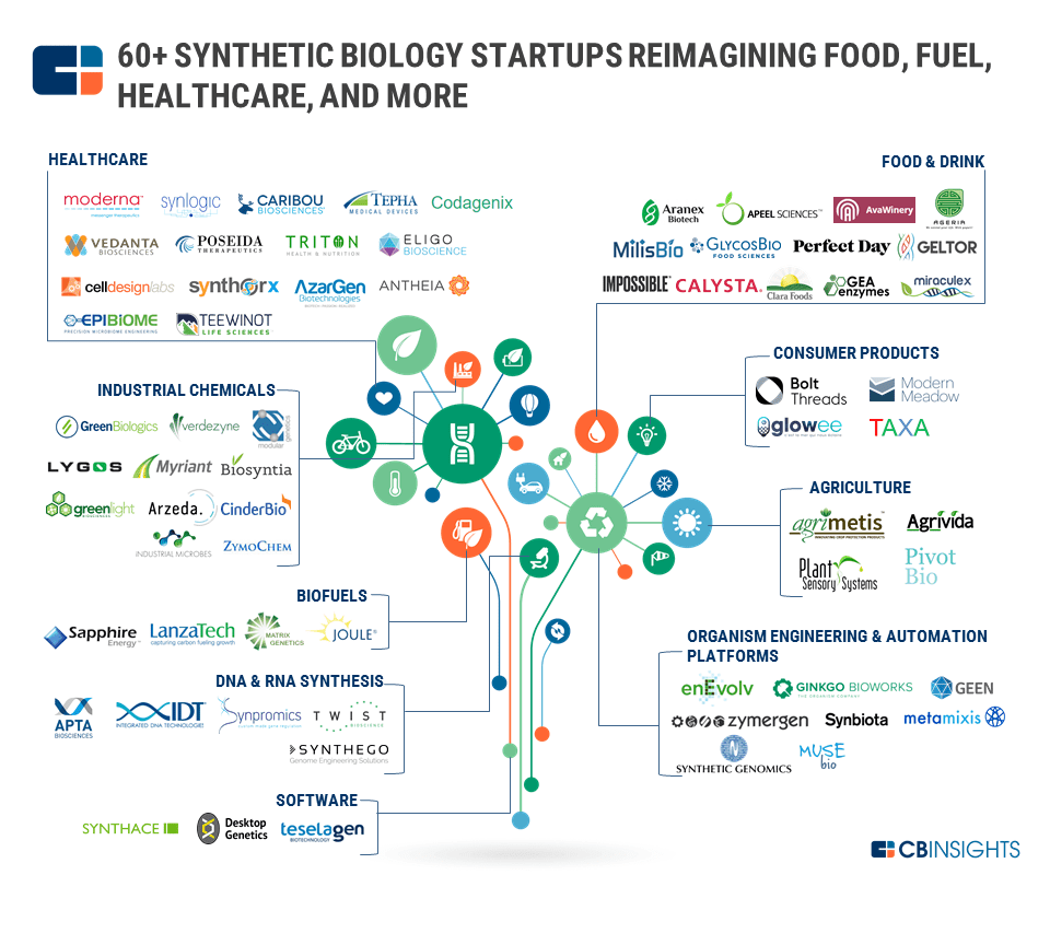 synthetic biology startups food fuel healthcare