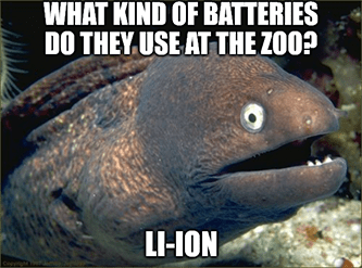 Lithium batteries at zoo li-ion eel pun meme