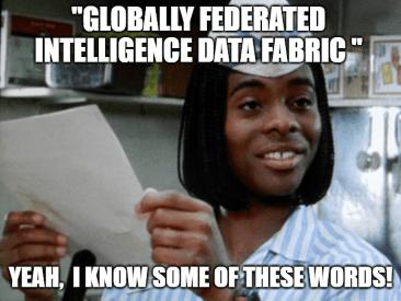 Globally federated intelligence data fabric Palantir Army meme