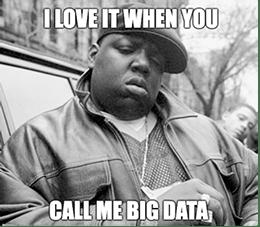 Love It When You Call Me Big Data Biggie Meme